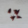 Kép 1/2 - Csillag lili - piros, 5db