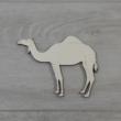 Egypúpú teve