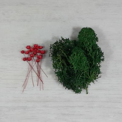 Tündérkert - Balkon csomag, piros