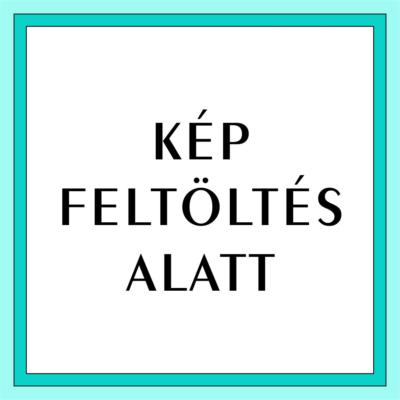 Pentart antikoló festék - Fekete, 50ml
