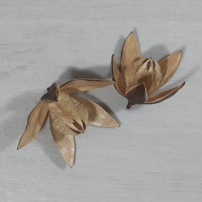 Wild lili - natúr, 2db