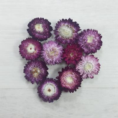 Szalmarózsa - piros, 10db