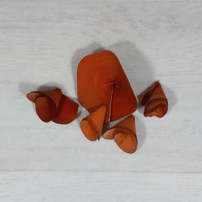 Fa tölcsér virág - narancs, 5db