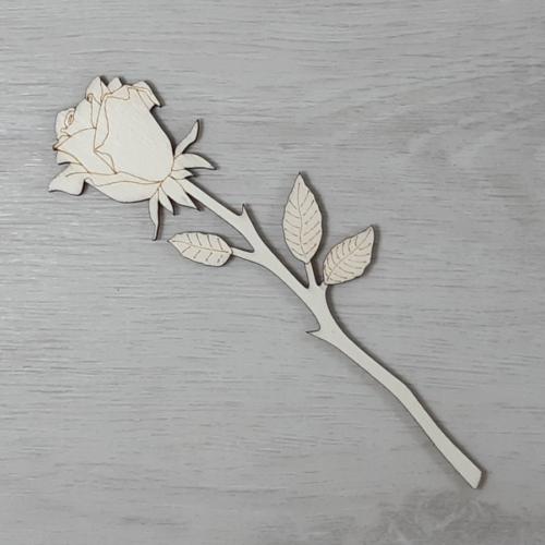Rózsa 1 - 15cm, natúr