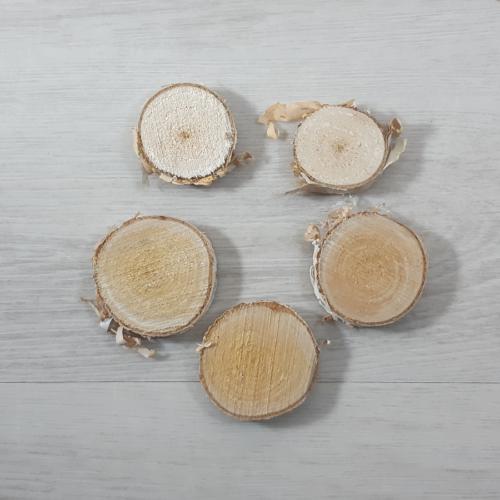 Nyírfa szelet - natúr, 2-5cm, 5db