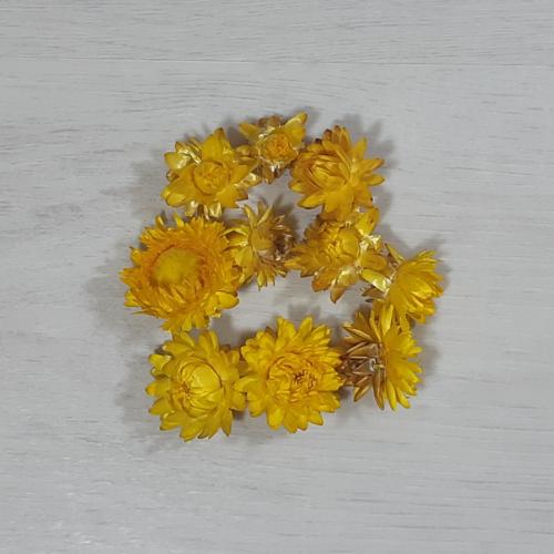 Szalmarózsa - sárga, 10db
