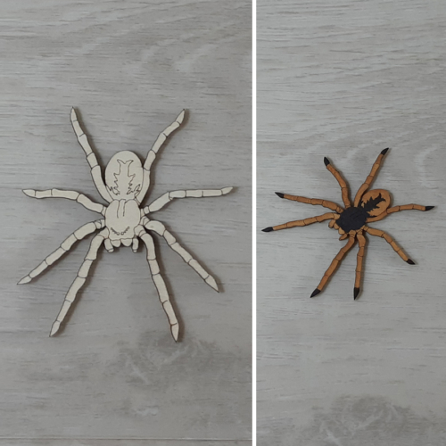 Madárpók - 8cm, natúr