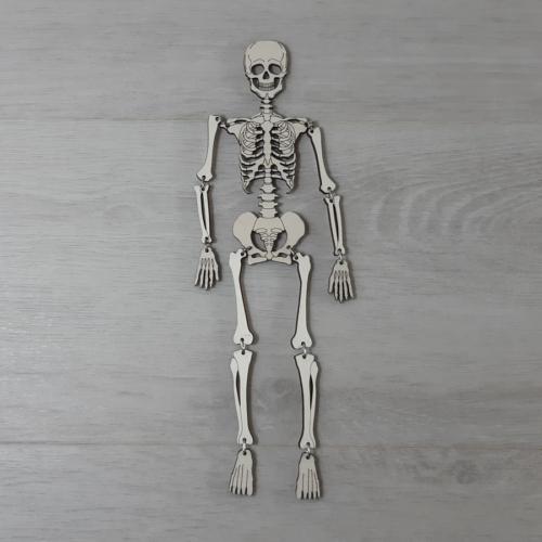 Nagy csontváz - 1m, natúr